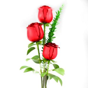 Amor_infinito_3_rosas_rojas